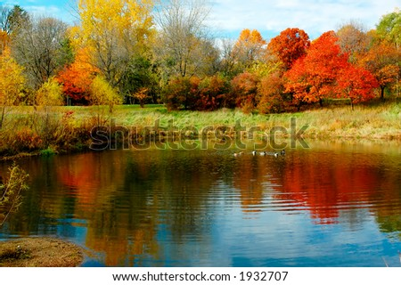 Autumn foliage along lake, pond or river. More with keyword group9b