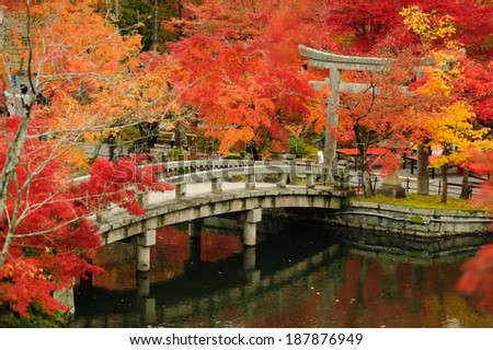 autumn foliage at Eikando Temple in Kyoto, Japan - stock photo