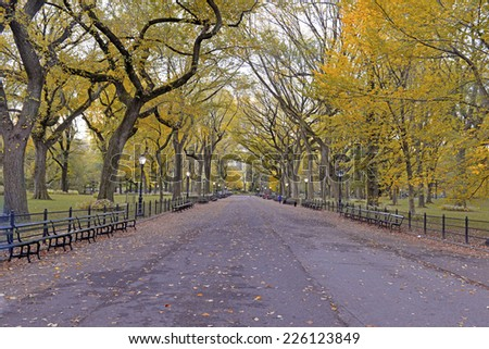 Autumn foliage - Fall colors in Central Park, New York - stock photo