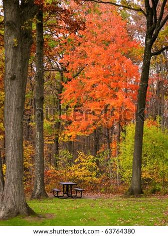 Autumn foliage in Pennsylvania - stock photo