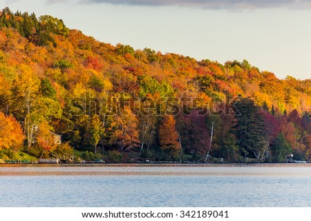 Autumn foliage in Vermont, Elmore state park. - stock photo