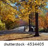 Autumn Footbridge with Foliage and Colors of Fall - stock photo