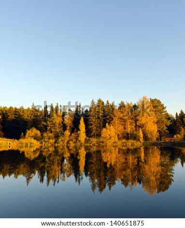 Autumn forest and lake in the fall season. - stock photo