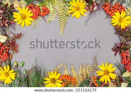 autumn forest frame on grey background - stock photo