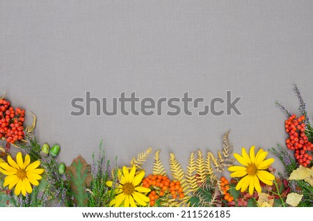 autumn forest frame on grey background