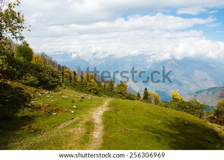 autumn forest in himalayan mountains - stock photo