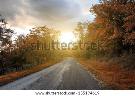 Autumn forest road in sunset - stock photo