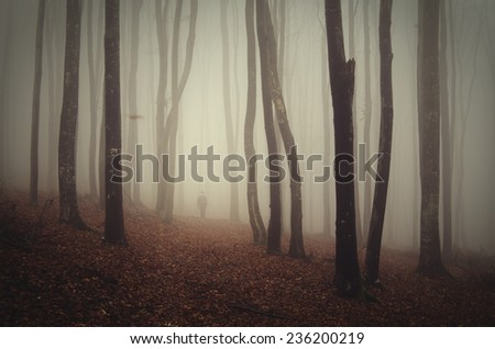 autumn forest with man on path - stock photo