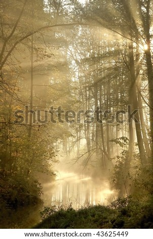 Autumn forest with mist floating over the river and the sun shining between the trees. - stock photo