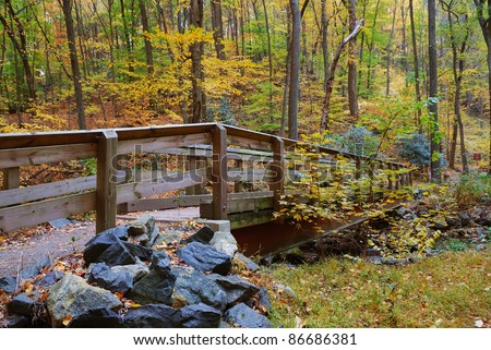 Autumn forest with wood bridge over creek in yellow maple forest with trees and colorful foliage. - stock photo