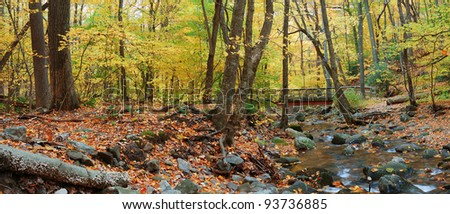 Autumn forest with wood bridge panorama over creek in yellow maple forest with trees and colorful foliage. - stock photo