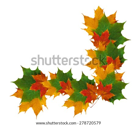 autumn frame of colorful leaves isolated on white background. - stock photo