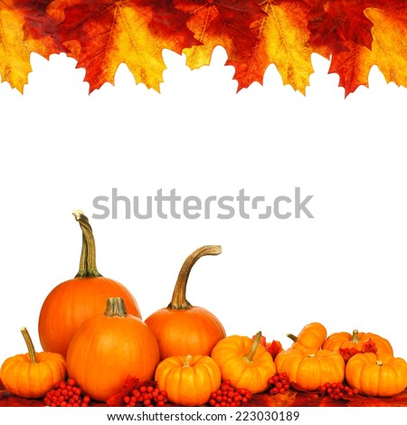 Autumn frame of pumpkins and vibrant leaves isolated on white               - stock photo