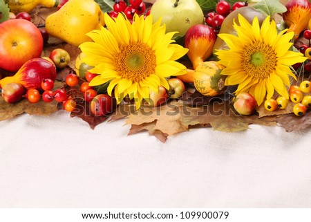 Autumn frame with fruits, pumpkins and sunflowers - stock photo
