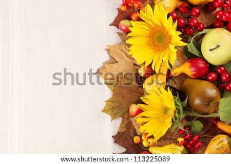 Autumn frame with fruits, pumpkins and sunflowers