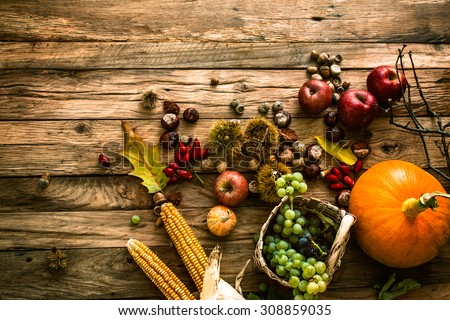 Autumn fruit background. Autumn Thanksgiving seasonal fruit. Nature background - stock photo