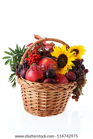 Autumn fruits and flowers on isolated white background