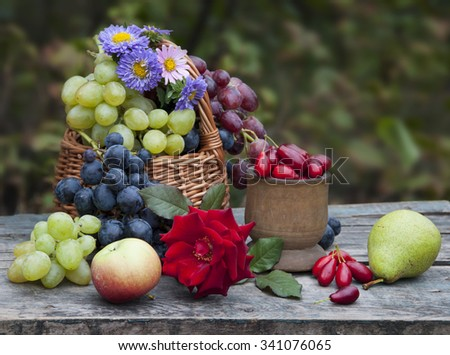 autumn fruits and flowers still life - stock photo