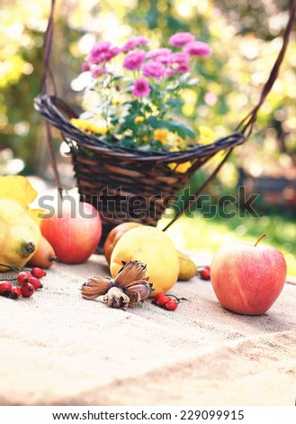 Autumn fruits - autumn harvest