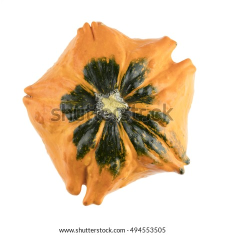 Autumn gourd, viewed from above and isolated on a white background.