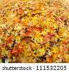 Autumn ground full of colorful leaves - stock photo