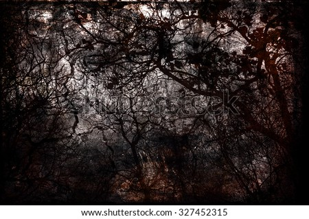 Autumn grunge: bare trees on a black / grey / dark background. Mystery, magic. Enchanted, gloomy forest. Danger, fear, anxiety / depression concept. - stock photo