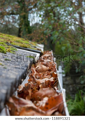 Autumn gutter blocked with leaves - stock photo