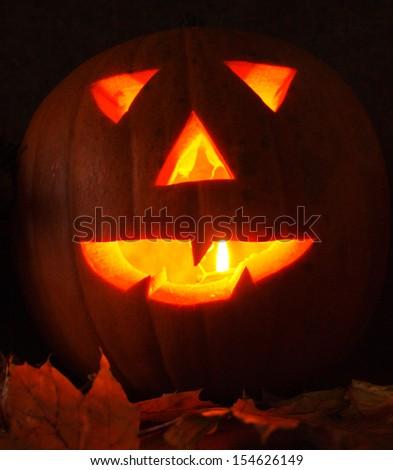 autumn,halloween pumpkin    - stock photo