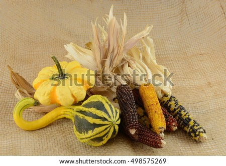 Autumn harvest decoration of gourds and Indian corn
