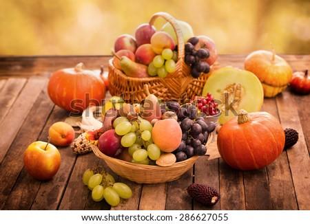 Autumn harvest - fresh autumn fruits - stock photo