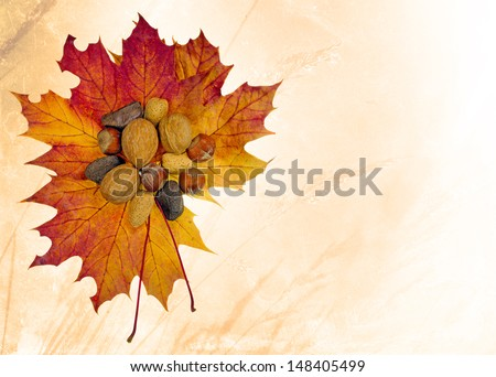 Autumn harvest of mixed whole nuts on maple leaves - stock photo