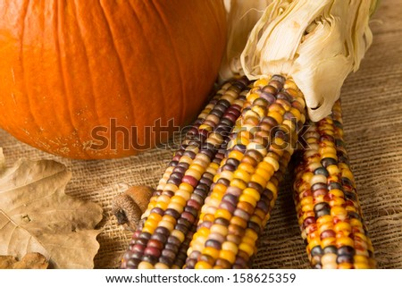 Autumn harvest scene close up with pumpkin, Indian corn, acorn and leaves - stock photo
