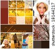 Autumn holiday design - stock photo