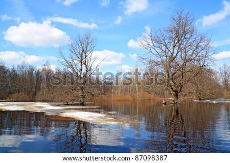 autumn ice on small river - stock photo