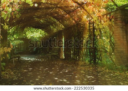 autumn in a garden tunnel, Moscow - stock photo