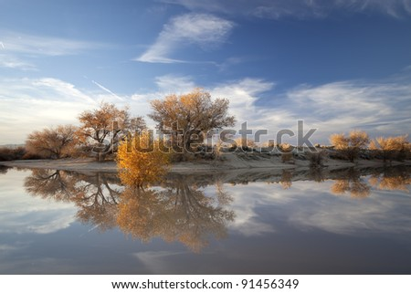Autumn in California. Reflection on the water. - stock photo