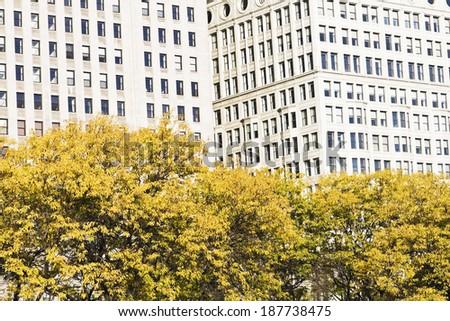 Autumn in Chicago - Michihan Avenue - stock photo