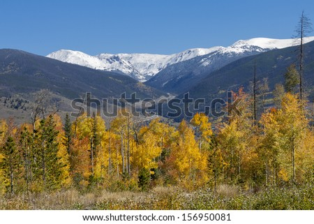 Autumn in Colorado's Eagle's Nest wilderness - changing aspen trees in Summit County.  Interstate highway I 70 winds through he center of the image.