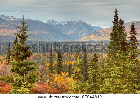 Autumn in Denali National Park and along the Parks Highway Alaska North America - stock photo