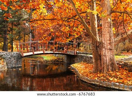 Autumn in early November - stock photo