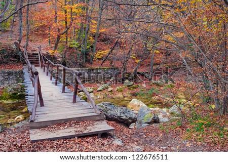 Autumn in forest mountains. mountain stream. - stock photo