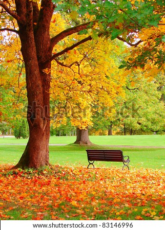 Autumn in Helsinki Public Garden - stock photo