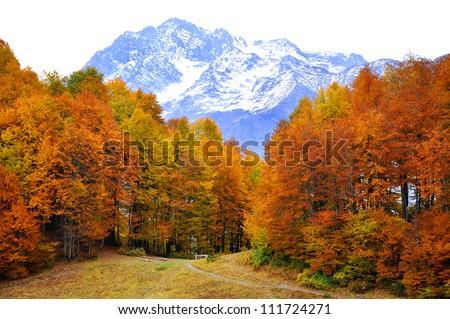 Autumn in High Mountains. Sochi, Russia. Krasnaya Polyana. - stock photo