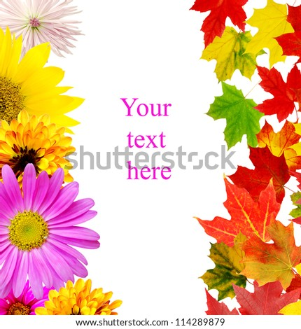 Autumn in leaves and flowers background - stock photo