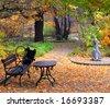 Autumn in park - stock photo