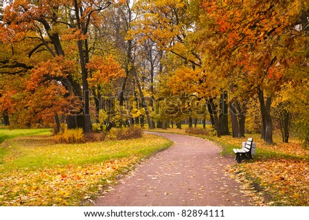 autumn in park - stock photo