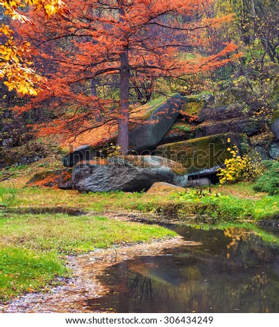 Autumn in park. Composition of nature. - stock photo