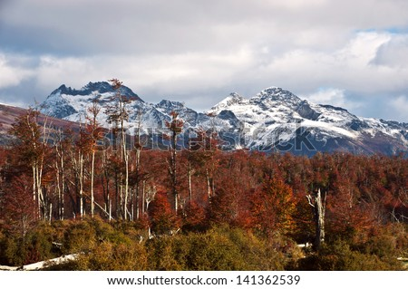 Autumn in Patagonia. Cordillera Darwin, part of Andes range, Isla Grande de Tierra del Fuego, Chilean territory, view from the Argentine side - stock photo