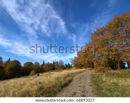 Autumn in polish mountains Beskidy - stock photo