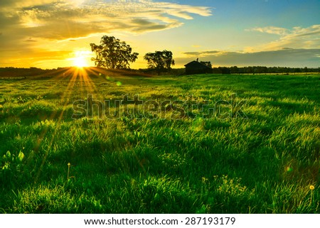 Autumn in the afternoon at sunset in Australia in the countryside. - stock photo